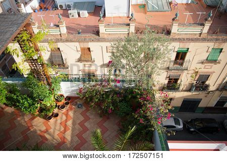 Beautiful small rooftop garden with lots of potted plants on a sunny morning
