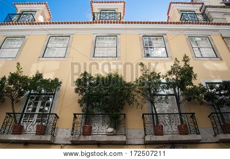 Street in Portugal. Beautiful house with green trees growing on the balcony, Lisbon