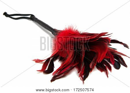 Black-and-Red Feathered fetish equipment isolated on white