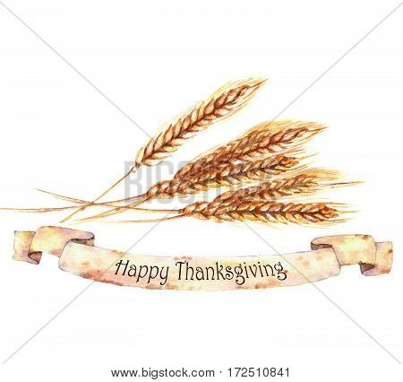 Watercolor autumn harvest. Isolated hand-drawn illustration of ripe wheat ears. Thanksgiving day card template.