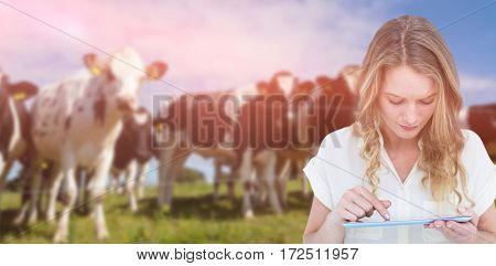 Woman using tablet pc against low angle view of cows at farm