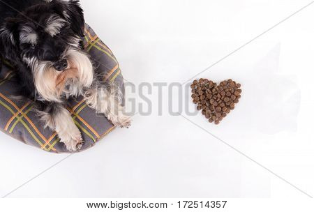 Dog Beside Heart Shaped Granules