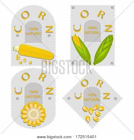 Vector illustration logo for whole ripe vegetable yellow corn, with green stem leaf, cut sliced.Corn drawing pattern consisting of tag label bow, peel grain, pip ripe sweet maize.Eat fresh corns health.