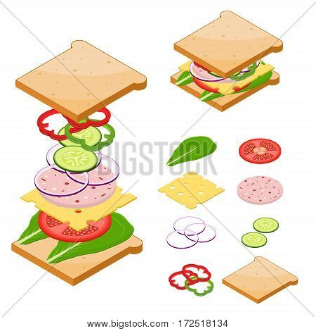 Ingredients for Classic Tasty Sandwiches American Fast Food for Poster or Card. Vector illustration