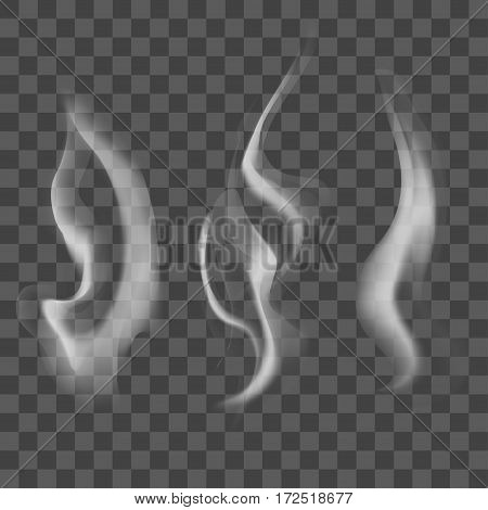 Realistic Steam or Smoke Texture Set on Transparent Background Natural Motion Effect. Vector illustration