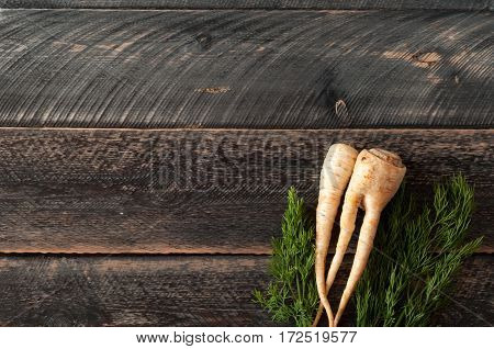 Fresh parsley root parsnip and dill on wooden background. Top view