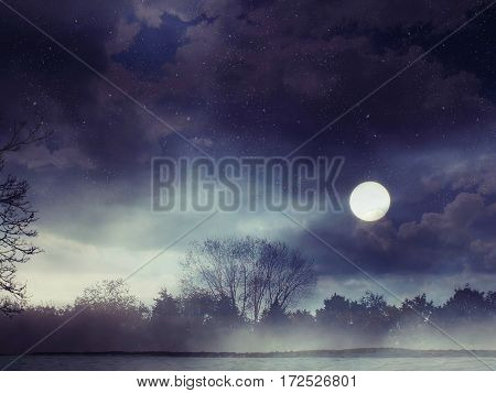 Fantasy landscape, Starry night in the forest