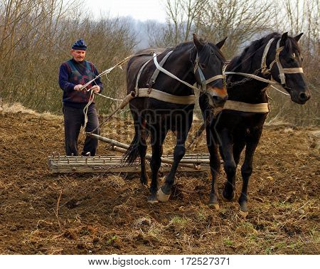 Goronglab Ukraine - March 11 2015: A farmer cultivates the land with the help of horses and harrows hand old-fashioned method.