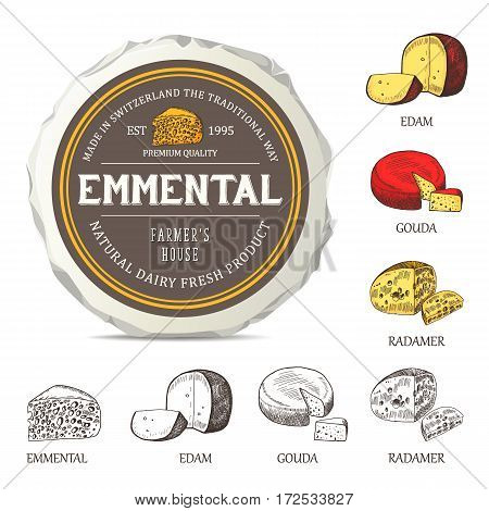 Cheese sticker design on mockup wrapper. Vector label with outline curd set. Hand drawn template used for advertising cheese and graphic icons good for logo design or emblem creation.