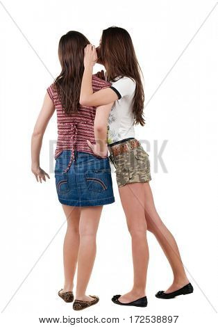 Two young  women friend gossiping.  backside view of person. Isolated over white background. Rear view people collection.