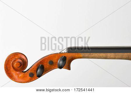 Violin fingerboard close-up shot on a white background