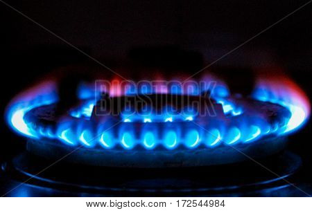 fire of the gas stove over black background