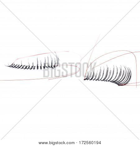 false eyelashes, black false eyelashes, isolated on white background