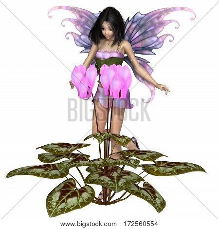 Fantasy illustration of a pretty dark haired fairy standing with a pink cyclamen flower, digital illustration (3d rendering)