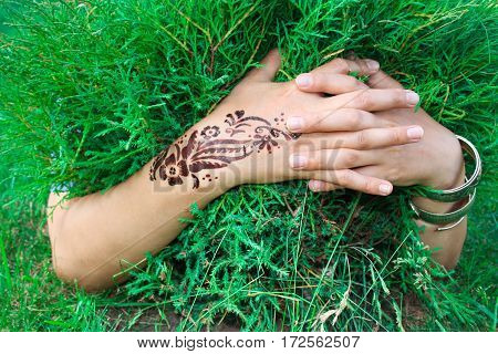 hands with mehendi and bracelets hugging juniper bushes