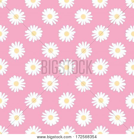Doodle camomile. Seamless vector wallpaper. Floral background