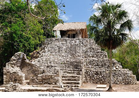 Coba - Pre-Columbian city of Mayans on the Jukatan Peninsula