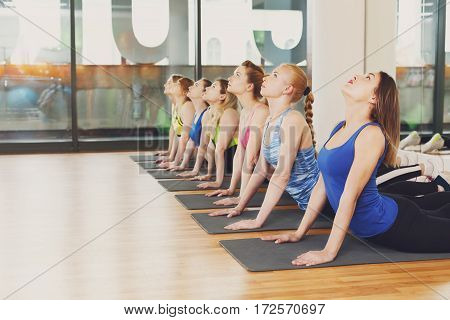 Group of young women making exercises on sunny morning. Girls do back stretching. Healthy lifestyle, gymnastics or yoga studio