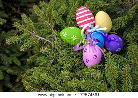 Still life with easter Easter eggs lying on fir-tree branches. Close-up outdoors.
