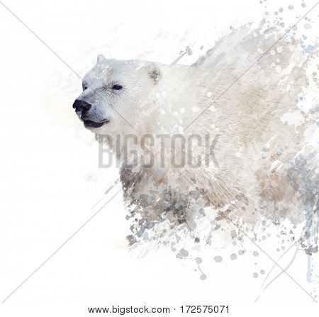Digital Painting of  Polar Bear