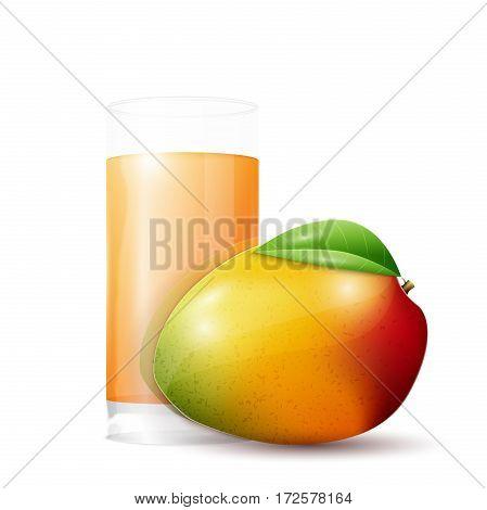 Mango and glass of juice. Fresh isolated on white background. Vector illustration, EPS 10