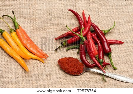Colorful Fresh Vegetable, Chilly Pepper With Spice In Silver Spoon