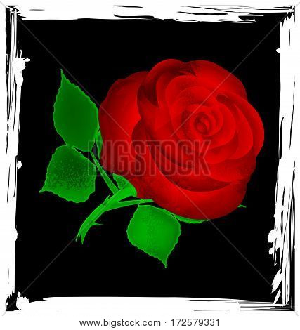 black background with black abstract and red-colored fantasy flower rose
