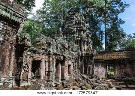 ruins of the temple of Ta Prohm, Angkor, Cambodia