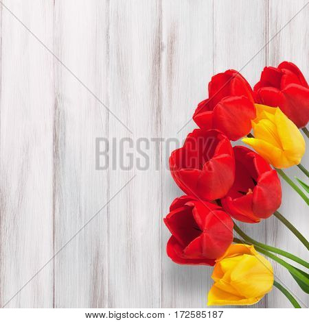 Amazing Blank Card for Easter March 8 valentines day mothers day. Red and yellow tulips flowers on white wooden background. Top view Flat lay.