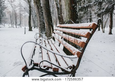 image of decorative wrought wooden bench with snow and ice.