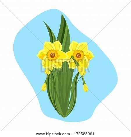 Beautiful daffodils green nature plant vector. Blossom springtime garden seasonal blooming daffodils. Daffodils narcissus yellow spring flower. Petal easter botanical flora colorful flowers.