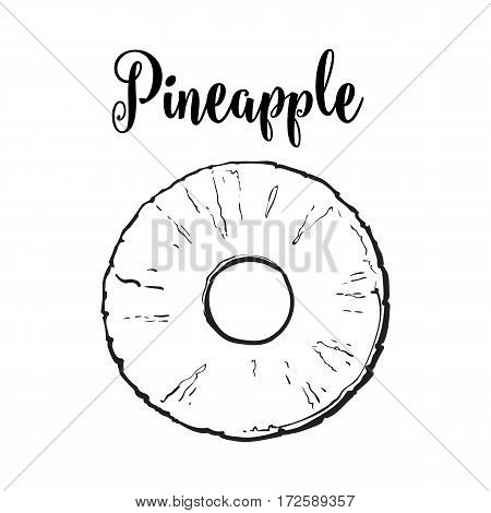 Peeled round pineapple slice with hole in the middle, top view, sketch style vector illustration isolated on white background. Realistic hand drawing of fresh, ripe pineapple slice