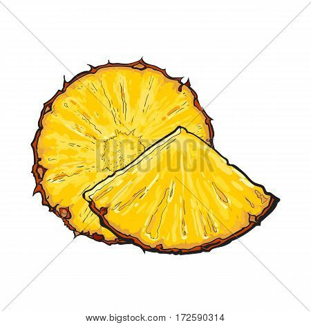 Unpeeled round and wedge cut pineapple slices, sketch style vector illustration isolated on white background. Realistic hand drawing of fresh, ripe pineapple round slice and wedge, triangular piece