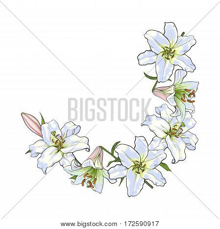 Half round frame of white lily flowers, decoration element, sketch vector illustration isolated on white background. Hand drawn white lily flowers as half round frame, banner, postcard design