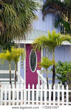 quaint cottage with pink front door and fence in palm trees