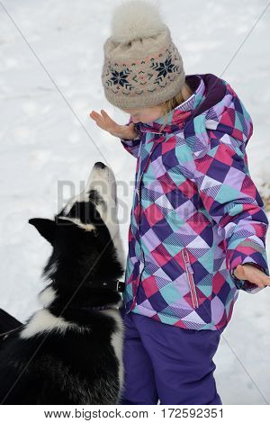 girl play with dog on snow
