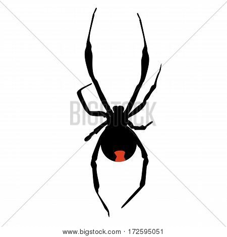 icon silhouette of a poisonous black widow spider. template vector illustration