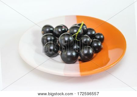 Large ripe berries of a black currant on a plate. Ripe fruit. Close-up.
