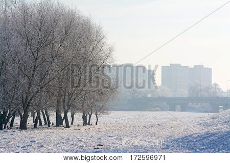 Misty morning on the outskirts of the city with trees and bridge