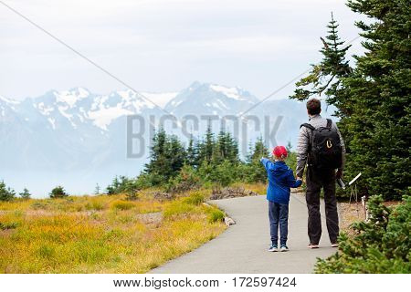 back view of family of two father and son enjoying mountain view in olympic national park washington state usa active lifestyle concept