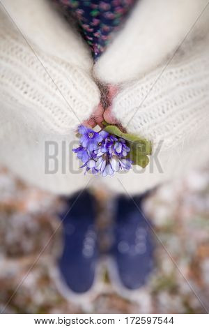 Beautiful snowdrops in hands of a young woman in white cardigan and blues flower dress. First spring flowers in a forest. Beginning of spring. Preparations for Easter