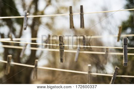 Clothespin hanged on ropes with nature background green.