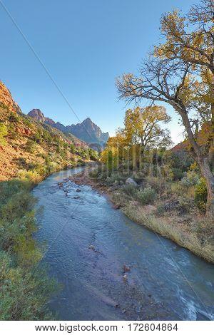 a scenic landscape in Zion national park Utah in fall