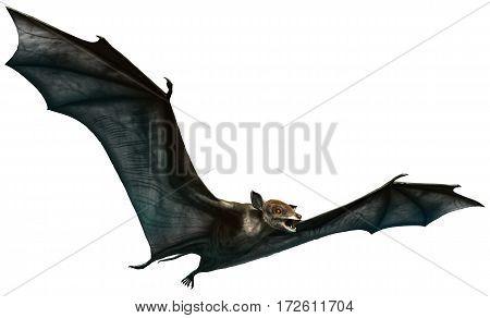 Icaronycteris , A prehistoric bat from the Eocene era