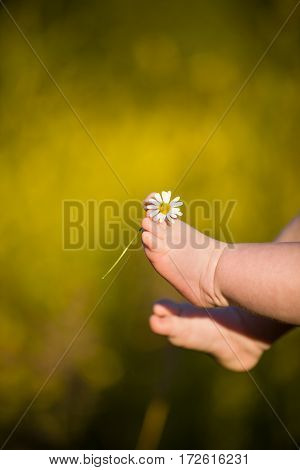 Bare feet of a cute baby on the summer background. Childhood in the farm. Small bare feet of a little baby girl.