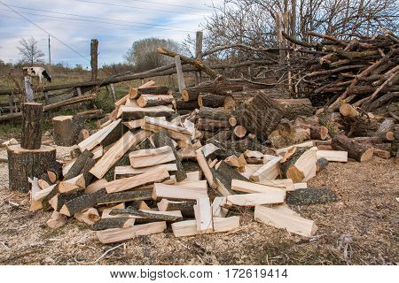 Pile of firewood. Preparation of wood for the winter in the village