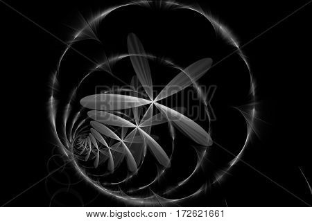 An abstract concentric rings and a flowers