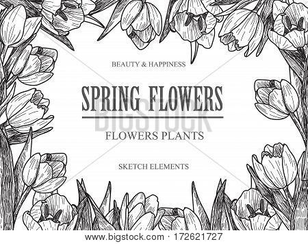 Vector design banner for flower shop and floristic shop with hand drawn flowers illustration. Vintage bouquet sketch background.