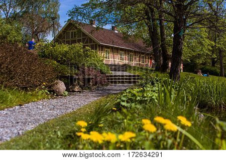 Norwegian cityscape with the road, yellow flowers and vegetation