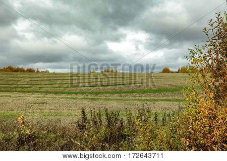 Dark Clouds Over The Autumn Striped Field